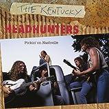 Pickin On Nashville [Import USA]