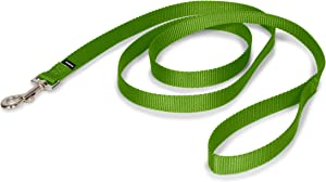PetSafe Nylon Dog Leash - Strong, Durable, Traditional Style Leash with Easy to Use Bolt Snap - Available in Multiple Widths and Colors
