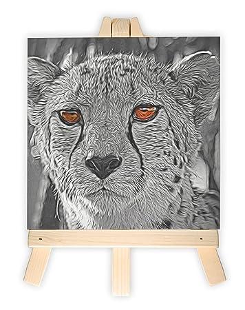 junger schöner Gepard im Dschungel schwarz/weiß orange Augen, Format ...