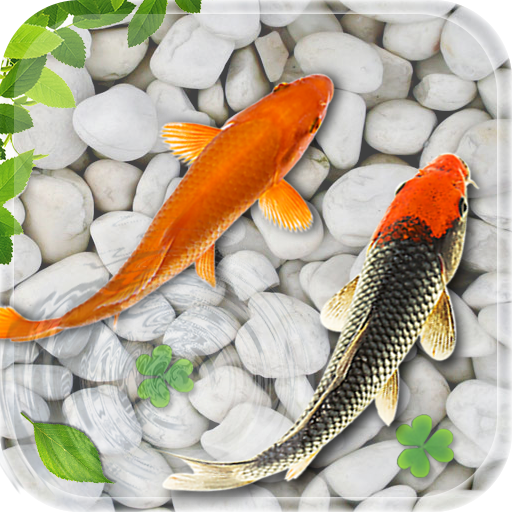 Top 10 Live Aquarium Fish Screensaver of 2019 | No Place ...