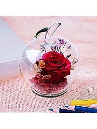 Ideashop Preserved Flower ...