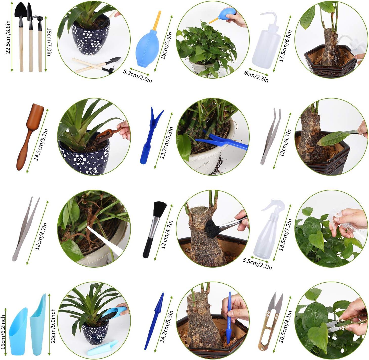 FORMIZON 15 Piezas Conjunto de Herramientas para Bonsai Mini Herramientas para Bonsai Mini Herramientas de Jard/ín Herramientas Bud y Conjunto de Herramientas de Transplantaci/ón Plantas Carnosas