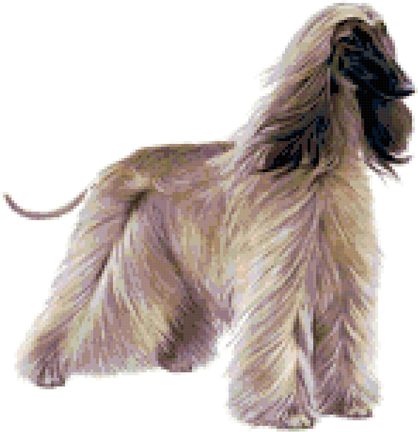 Afghan Hound Dog Counted Cross Stitch Pattern