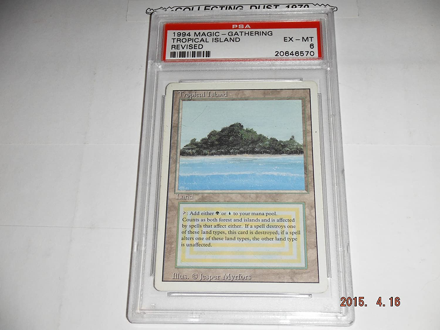 Magic: the Gathering - Tropical Island - Revised Edition B0062DOTOC