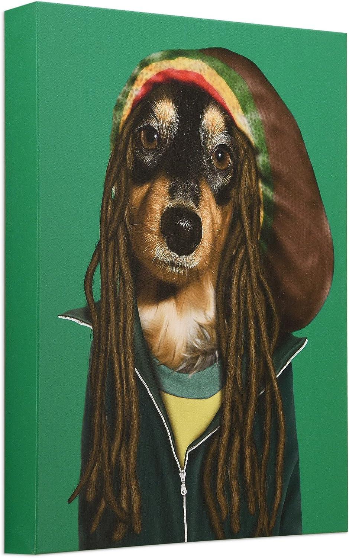 Empire Art Direct GIC-PR011-2016 Pets Rock Reggae Fine Art Giclee On Cotton Canvas Graphic Wall Art 16 by 20