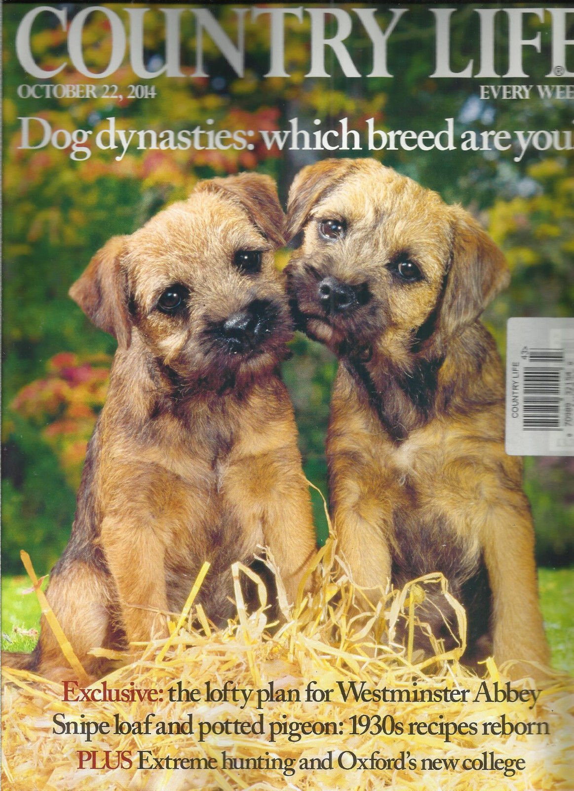 COUNTRY LIFE, EVERY WEEK, OCTOBER, 22nd 2014 (DOG DYNASTIES: WHICH BREED ARE