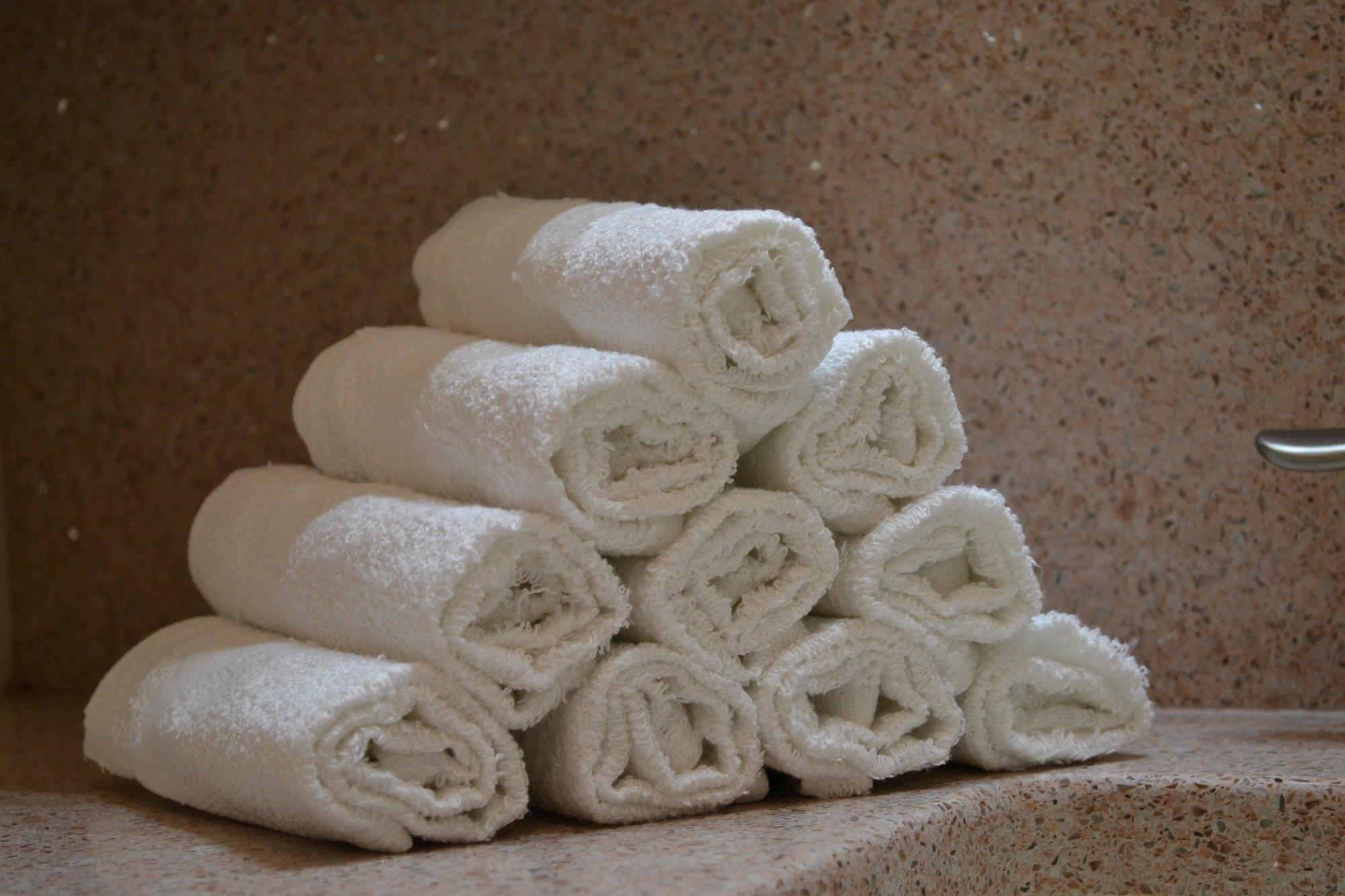 Elaine Karen 24pk Cotton Bar Mops Kitchen Towels - WHITE