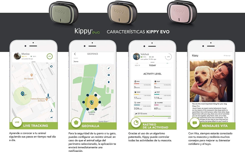 Kippy EVO, El Nuevo GPS and Actividad para Perros y Gatos, 38 gr ...