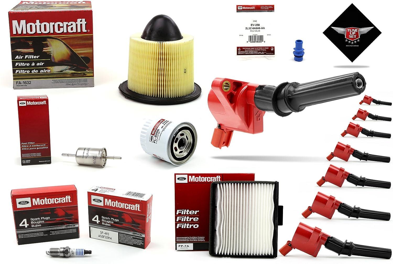 Amazon.com: TUNE UP KIT 2002-2003 F150 V8 4.6L High Performance Ignition Coil DG508: Automotive