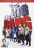 Big Bang Theory - Stagione 10 (3 Dvd)
