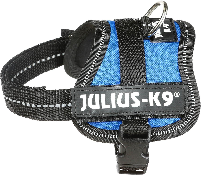 K9 Powerharness, Tamaño: Baby 1, Colore: Azul: Amazon.es ...