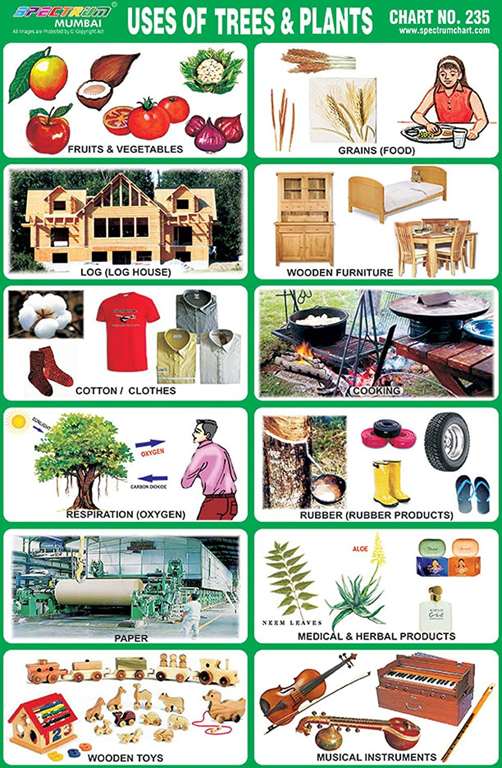 Uses Of Trees & Plants Children Education Learning Pictorial