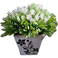 HYPERBOLES Artificial Plant for Home Decor Small Flower Tree with Ceramic Pot - 10 Inch