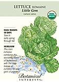 Lettuce Romaine Little Gem Certified Organic Seed