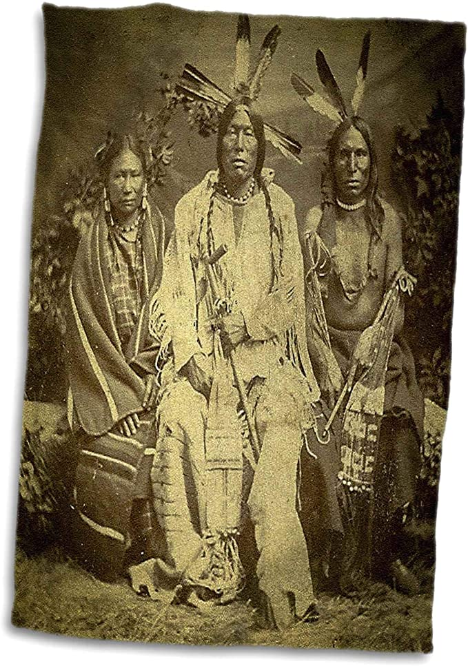 Stereoview T-Shirts 3dRose Scenes from The Past Vintage Stereoview Card 1875 Native American Sioux Chiefs in Iowa