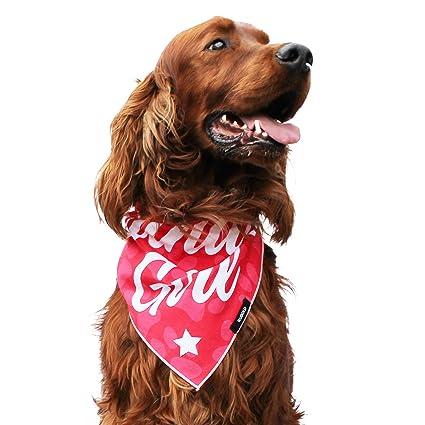 RUBOLD Birthday Girl Dog Bandana Large Best Size Bandanas For Party Easy To