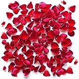 Rosa di Velluto - San Valentino - Romantici Petali Rossi Floreali per Eventi Matrimoni Anniversari Cerimonie Feste Fidanzamento e Decorazioni (1000)
