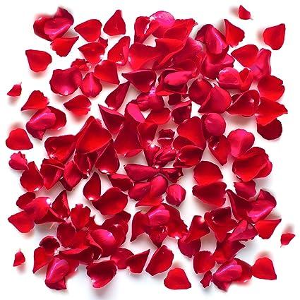Pétalos De Rosa Rojos Confeti Flores De Seda Románticas De La