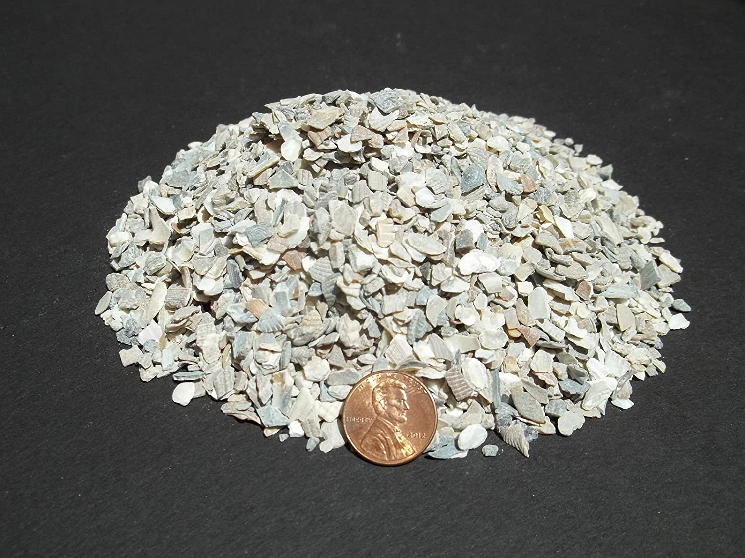 Crushed Oyster Shell, MEDIUM Dyna Rock Cactus Cacti Seedling Soil Media 20 Lb Bag