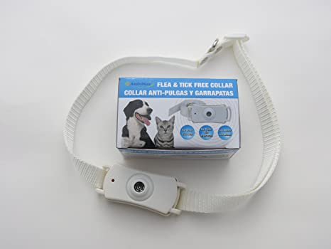 Amazon.com : (3 Pack) Flea and Tick Collar. Ultrasonic flea and tick control collar for dogs and cats. Flea Free collar. : Pet Supplies