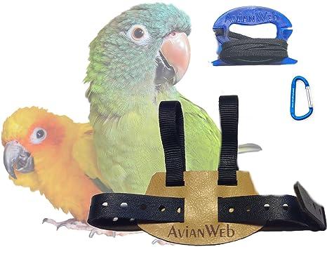 81HssYtqUdL._SX466_ amazon com avianweb ez bird harness with 6 ft leash (conures