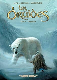 les druides t07 les disparus de cornouailles