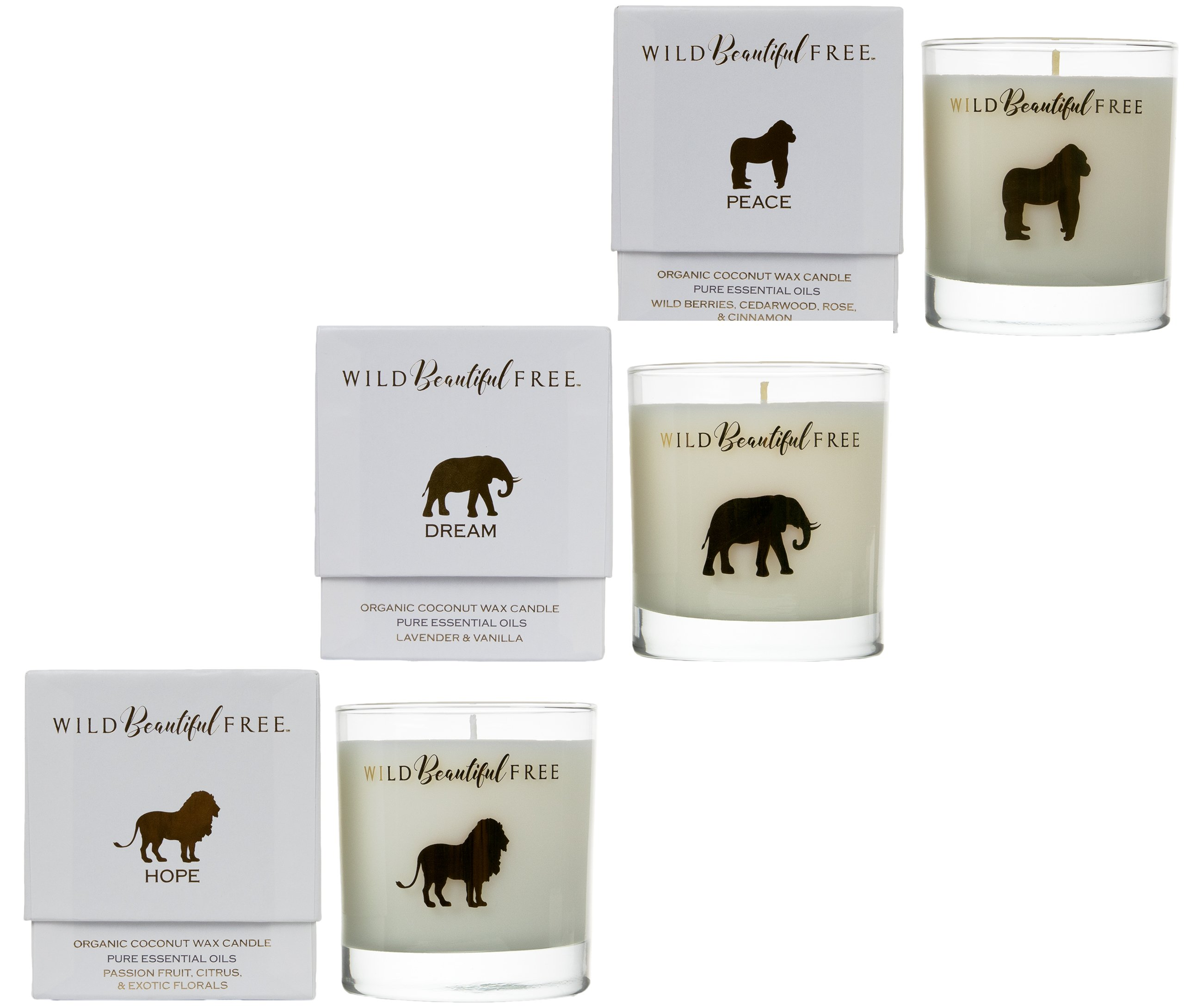 Wild BeautifulFree Organic Candle Set - Vegan Aromatherapy Candles with Pure Essential Oils and Cruelty-Free Wax (3-Pack) by Wild Beautiful Free (Image #1)