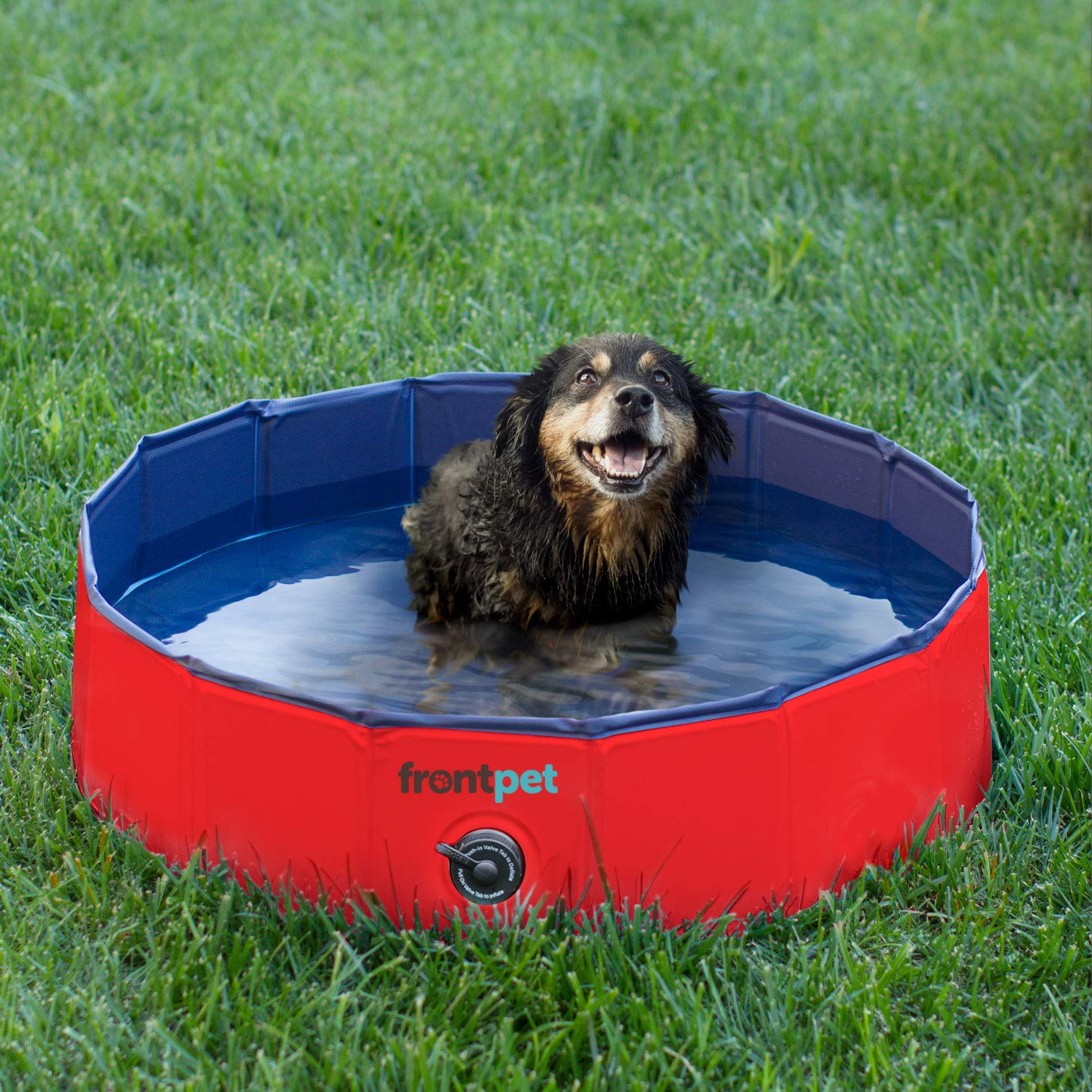 FrontPet Foldable Dog Pet Pool Bathing Tub (32 Inches X 11.8 Inches) by FrontPet