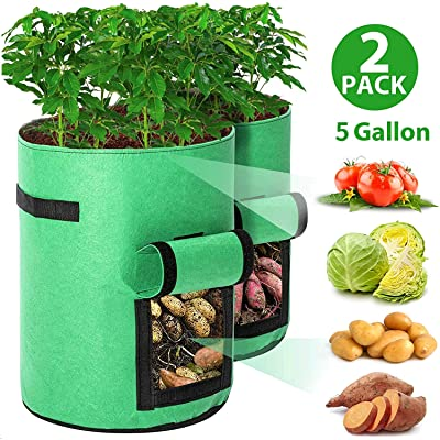 LightsEtc 2 Pcs 5 Gallon Garden Boxes, Garden Planting Grow Bags Planter Pot with Flap Handles for Potato Tomato and Other Vegetables, Breathable Nonwoven Fabric Cloth Green : Garden & Outdoor