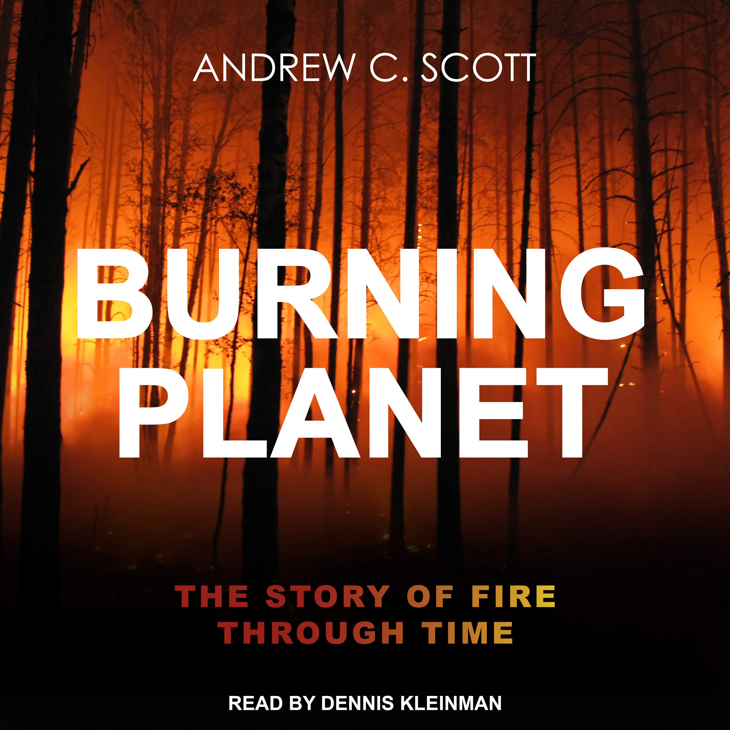Burning Planet: The Story of Fire Through Time