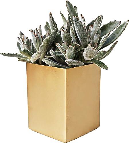 Large Planter Square Plastic Garden Indoor Flower Plant Herb Pot METALLIC Style