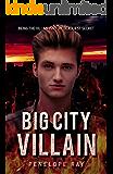 Big City Villain: A Superhero Novel
