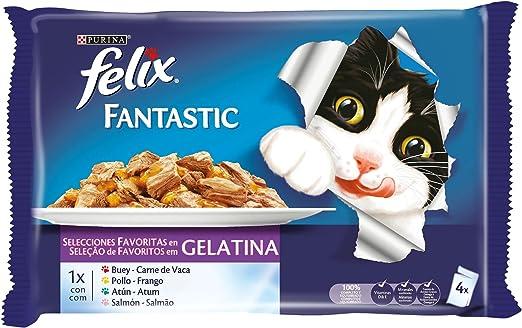 Purina Felix Fantastic Gelatina comida para gatos Selecciones Favoritas 10 x [4 x 100 g]: Amazon.es: Productos para mascotas