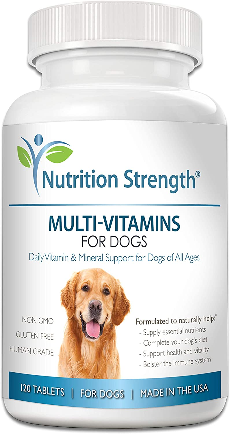 Nutrition Strength Multivitamins for Dogs, Daily Vitamin and Mineral Support, Nutritional Dog Supplements for All Canine Breeds and Sizes, Promotes Immune Health in Pets, 120 Chewable Tablets