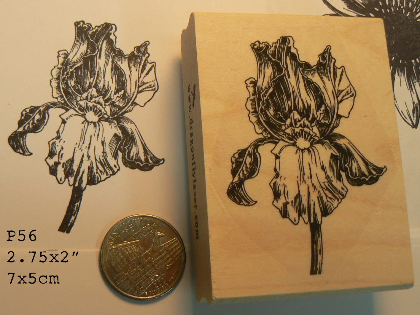 Iris Flower Rubber Stamp P56