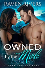 Owned by the Mob: BWWM Mafia Romance ( Russian Mobster Book 3) Kindle Edition