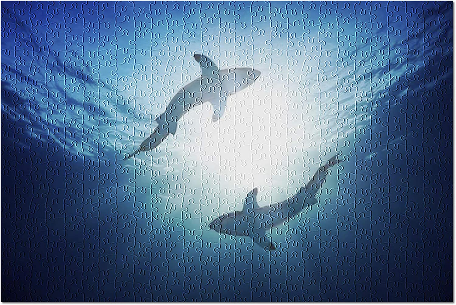 Great White Sharks by Surface of Water, View from Below 9004320 (Premium 500 Piece Jigsaw Puzzle for Adults, 13x19, Made in USA!)