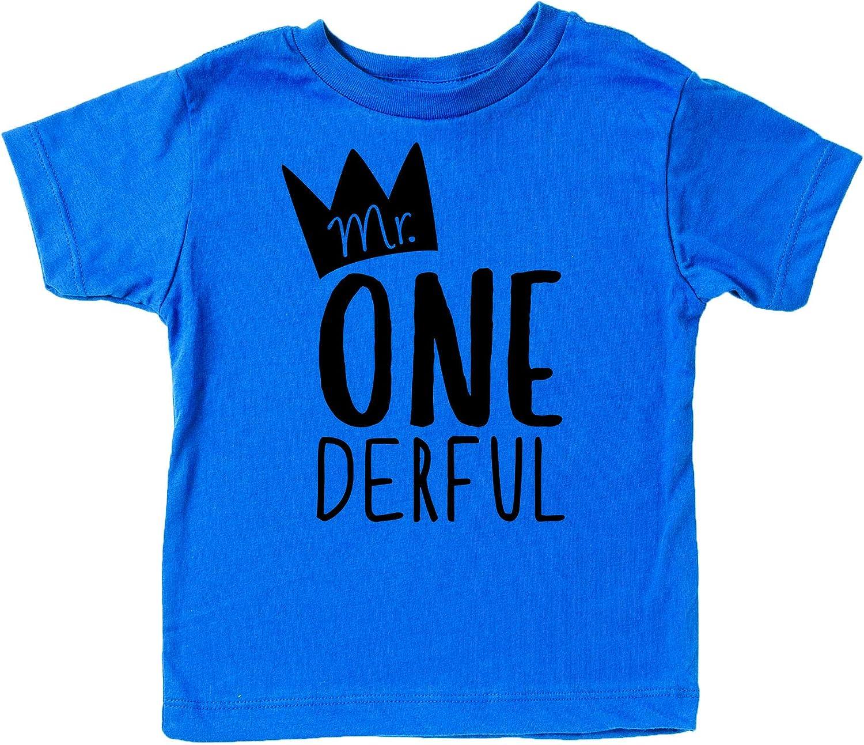 Mr One-Derful Baseball Tee Shirt for Boys 1st Birthday Shirt
