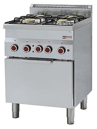 Modular Cocina de gas 4 quemadores y eléctrico convección horno – invitados Lando