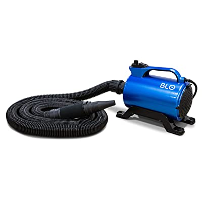 BLO Car Dryer AIR-RS - Quickly Dry Your Entire Vehicle After a Wash - No More Drips, No More Scratches- Adjustable Air Speed - Long Hose: Automotive