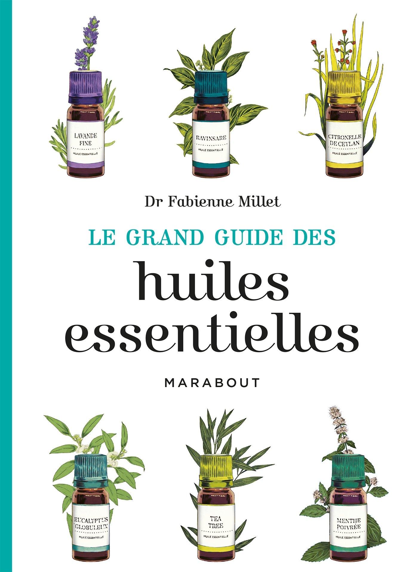 Le Grand Guide Des Huiles Essentielles Fabienne Millet