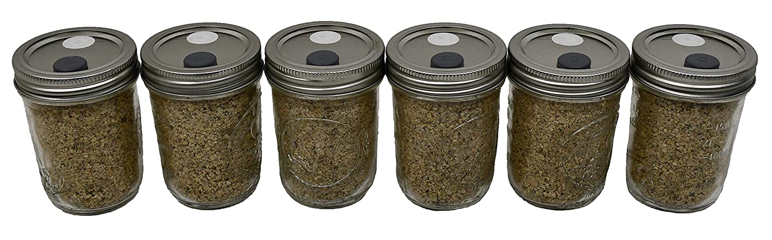 BRF Jars Brown Rice Flour Mushroom Substrate (Six Pack)
