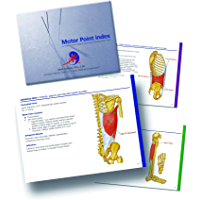 Motor Point Index - An Acupuncturist's Guide to Locating and Treating Motor Ponts (English Edition)