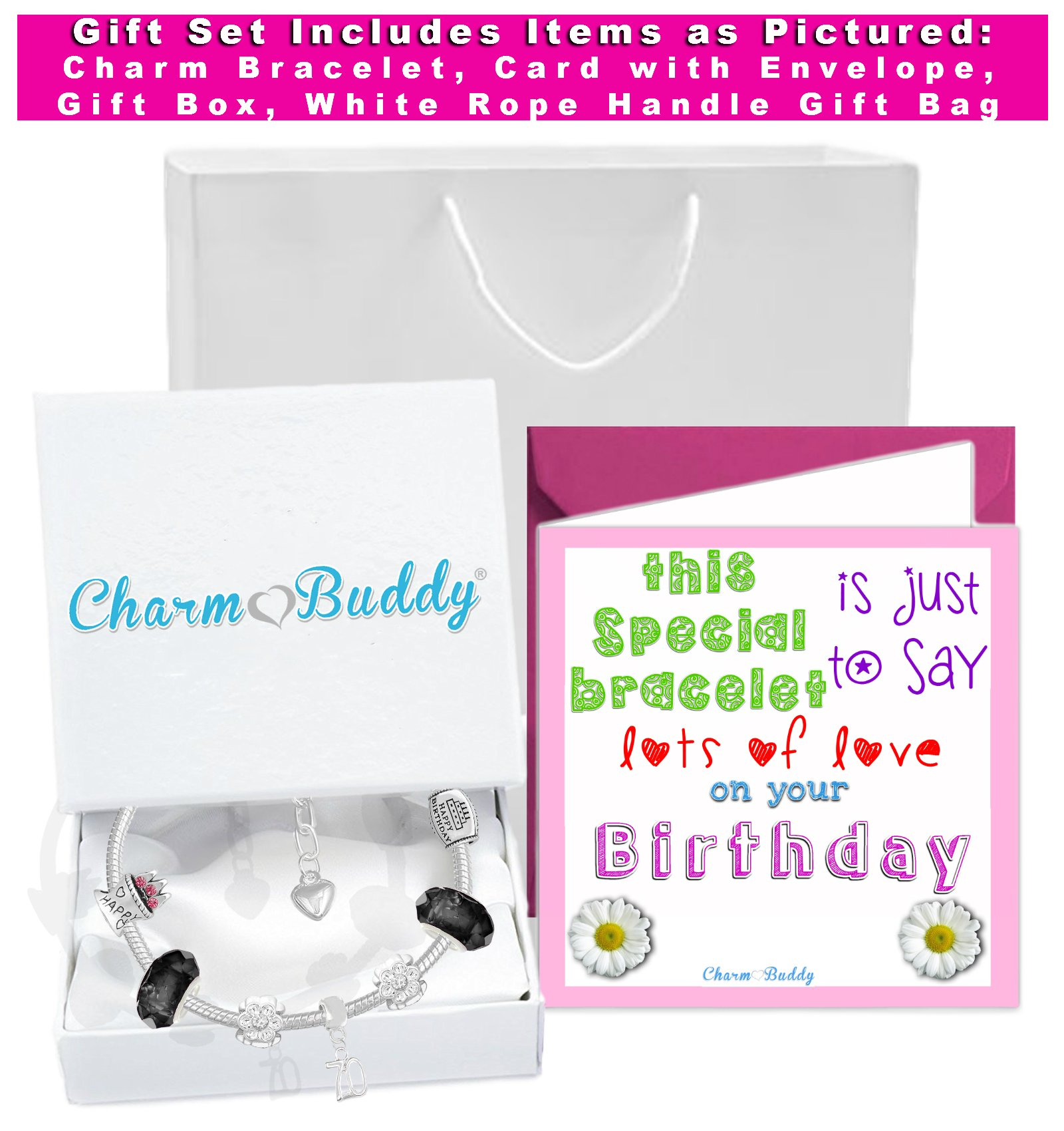 70th Birthday Good Luck Lucky Black Silver Pandora Style Bracelet With Charms Gift Box Jewelry by Charm Buddy (Image #2)