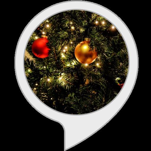 Amazon Com Christmas Countdown Alexa Skills