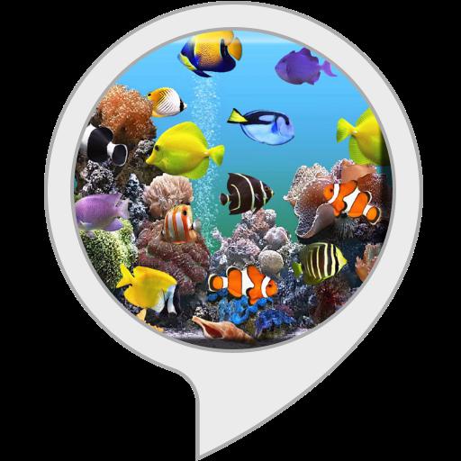 Aquarium Screensaver for Echo Show in USA