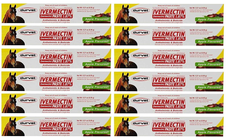 Durvet Ivermectin Paste Equine Dewormer - 12 Pack (24-Pack) by Durvet