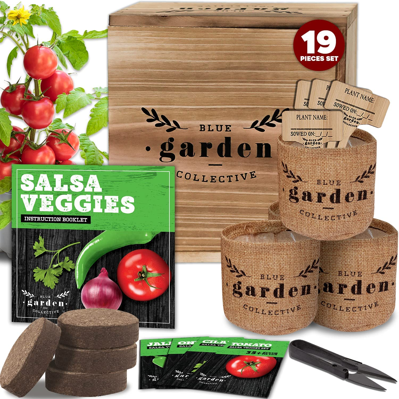 Indoor Garden Kit Seed Starter Kit, Indoor Gardening, Vegetable Garden Kit, Indoor Herb Garden, Gardening Gifts for Women, Salad Kit, Seed Starter Kit, Vegetable Seeds for Planting, Garden Starter Kit