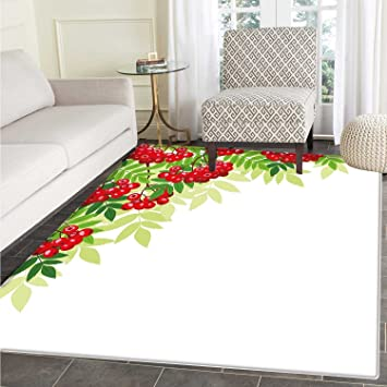 Amazon Com Rowan Rugs For Bedroom Vibrant Bunch Of Ripe Berries