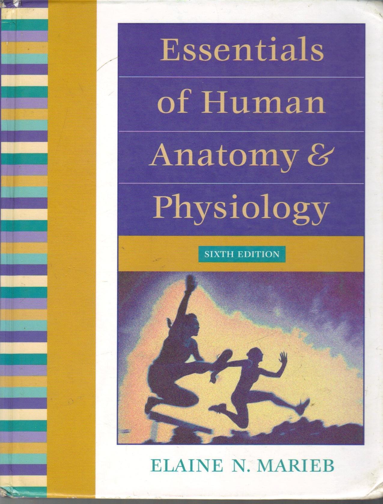 Buy Essentials of Human Anatomy and Physiology School Edition Nasta ...